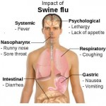 Effects of Swine Flu on the Lungs